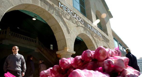 14 Mercado De Abastos