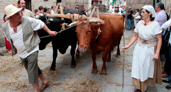 A Feira Franca De Pontevedra