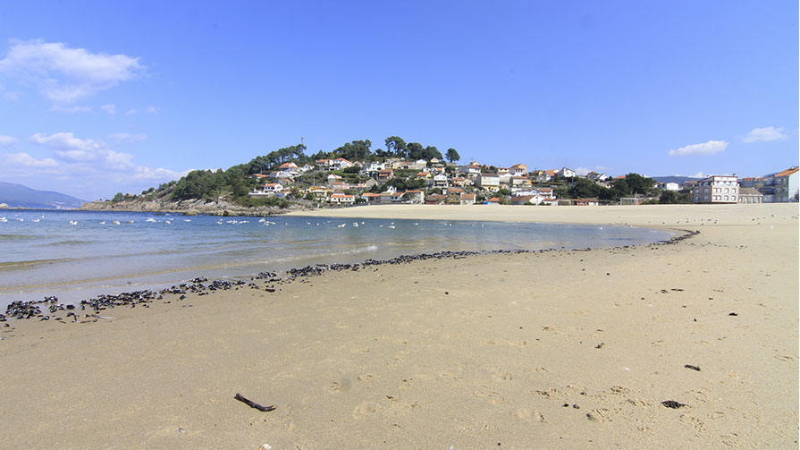 playa de lapaman Marin