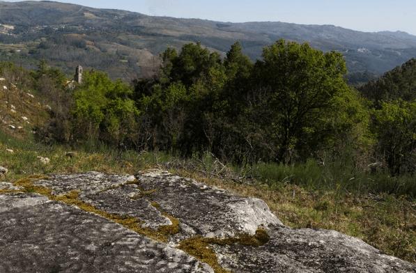 Campo Lameiro3