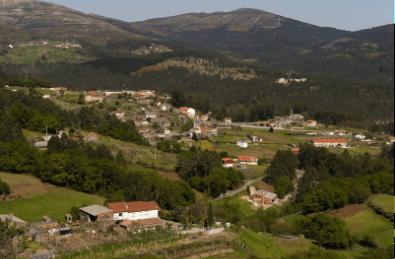 Campo Lameiro5