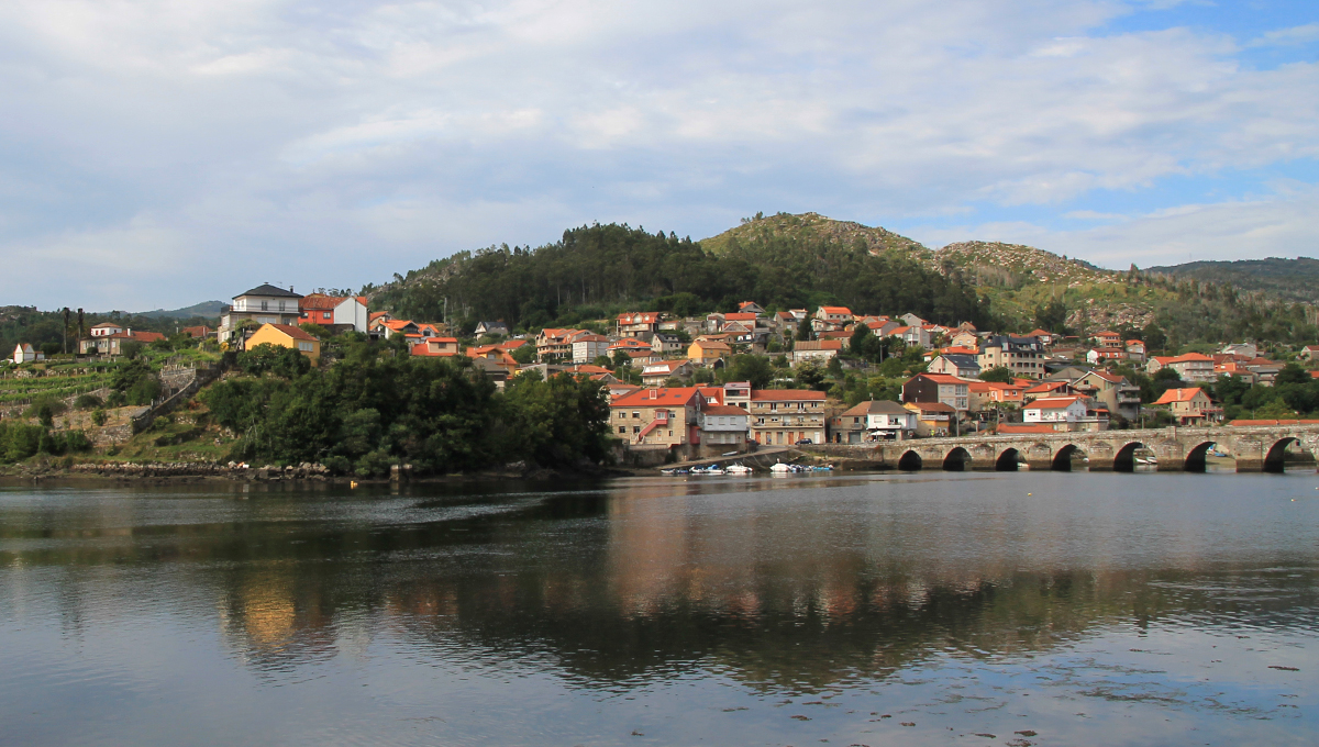 Pontesampaio avistamiento aves Pontevedra